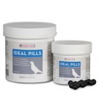 Ideal pills ยาบิน เสริมพละกำลังไก่ชน บรรจุ 500 เม็ด