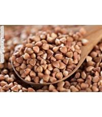 Buck wheat อาหารนกธัญญาพืช สำหรับนกแก้วปากขอ ทุกชนิด นิยมมากในต่างประเทศ บรรจุ 500 กรัม