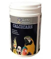 Calcicare แคลเซี่ยมชนิดผงเข้มข้น ชนิดพิเศษ!! ใช้โรยผสมลงบนผลไม้ หรือโรยผสมในอาหาร บรรจุ 500 กรัม
