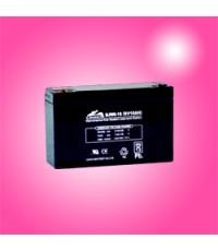 แบตเตอรี่แห้ง LEOCH DJW6-10 CHINA 6V 10Ah