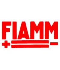 FIAMM แบตเตอรี่ สื่อสาร โทรคมนาคม มือถือ ไวไฟ เครื่องสำรองไฟ โซล่าเซลส์