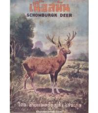เนื้อสมัน (Schomburgk Deer)