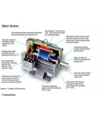มอเตอร์มิตซูบิชิ 7.5 แรงม้า รุ่น SF-JR 7.5 HP 4 P