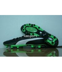 รองเท้าฟุตบอล Puma King SL Black Green EURO 2012