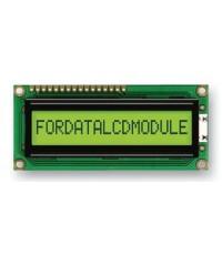 FDCC1601E-RNNYBW-16LE FORDATA Character
