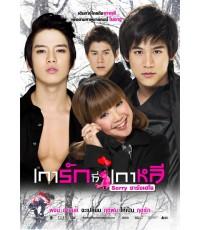 เการักที่เกาหลี sorry ซารางเฮโย 1 DVD มาสเตอร์