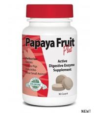 Papaya Fruit Plus 90 ct.