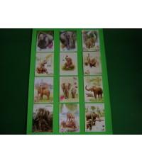 ภาพโปสการ์ดบัตรอวยพร ชุด ภาพช้างไทย