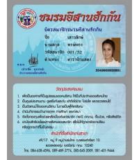 บัตรพนักงาน บัตรสมาชิก 4 สี พีวีซี Card PVC 2 ด้าน