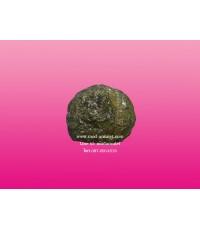 คตปรอทหลวงปู่ละมัย สวนป่าสมุนไพร ขนาดใหญ่ LP Lamai