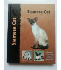 Siamese Cat แมวไทย