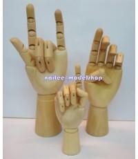 โมเดลหุ่นมือไม้