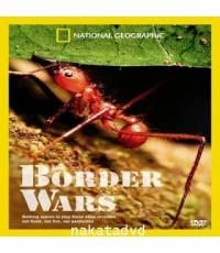 สารคดี National Geographic : The Border Wars (สงครามมดคันไฟ)  DVD 1 แผ่น ภาษาBilingual