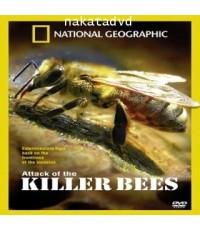 สารคดี National Geographic : Attack Of The Killer Bees (กองทัพผึ้งเพชฌฆาต) DVD 1 แผ่น ภาษาBilingual
