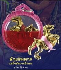 ม้าเสพนาง เลี่ยมน้ำมันว่านไก่แดง ครูบานะ สำนักสงฆ์ดอยอีฮุย