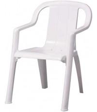 เก้าอี้มีพนักพิงและท้าวแขนCH34