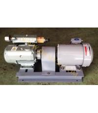 ปั๊มสูญญากาศ 200 ลิตร (ไม่ใช้น้ำมัน) รุ่น DV-0  OP