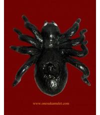 แมงมุมดักทรัพย์ หลวงปู่สุภา รุ่นมหาเศรษฐี ตาเป็นเพชรท้องเป็นถุงเงิน (9)