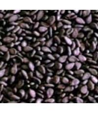 น้ำมันเทียนดำ บริสุทธิ์ / น้ำมันฮับบะฮฺตุสเซาดาอฺ - 100ซีซี