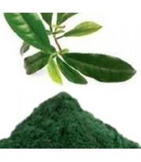 ชาเขียว ไทยผง - 100กรัม