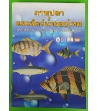 ภาพปลาและสัตว์น้ำของไทย