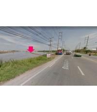 ขายที่ดิน 63ไร่ ติดห้างไทยวัสดุ ติดถนนลำลูกกาคลอง 7