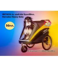 (ใหม่)รถเข็นสุนัขคันใหญ่ นำเข้าIbiyaya รุ่น Hercules (ส่งฟรี)ล้อแสตนเลสสูบลมได้ รับนน.สูงสุด50กก