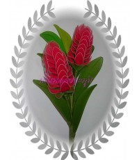ดอกไม้ผ้าใยบัว ดอกข่าแดง ดอกคู่