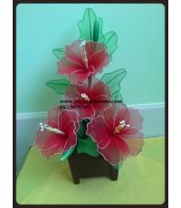 Hibiscus หรือ ชบา เป็นดอกไม้ประจำชาติของ ประเทศมาเลเซีย