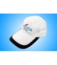 หมวก C002