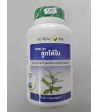 แคบซูลลูกใต้ใบ  Phyllanthus urinaria Capsule
