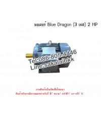 มอเตอร์ Blue Dragon (3 เฟส) 2 HP