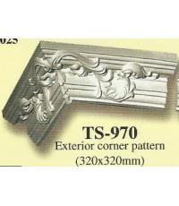 TS-970