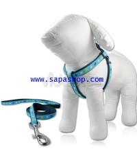 จำหน่าย สายจูงสุนัข เชือกหนา คุณภาพเยี่ยม สีฟ้า ราคาประหยัด (พรีออเดอร์)