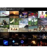 Full Moon Party DVD : DVD ถ่ายบรรยากาศฟูมูนที่เกาะพะงัน MASTER 1 แผ่นจบ