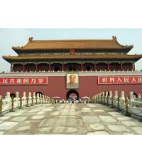 พระราชวังต้องห้าม The Forbidden City  3 แผ่นจบ (ซับไทย+พากย์ไทย)