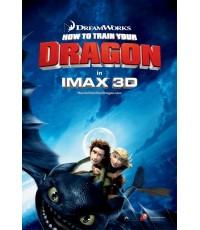 How to Train Your Dragon อภินิหารไวกิ้งพิชิตมังกร  1 แผ่นจบ (ซับไทย+พากย์ไทย)