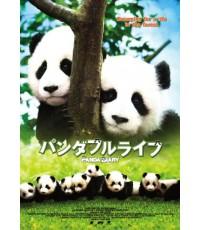 Panda Diary อู๊ลั่นล้า แพนด้ามาเป็น 10 / 1 แผ่นจบ (ซับไทย+พากย์ไทย)