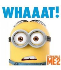Despicable Me 2 (มิสเตอร์แสบ ร้ายเกินพิกัด ภาค 2)  1 แผ่นจบ (ซับไทย+พากย์ไทย)
