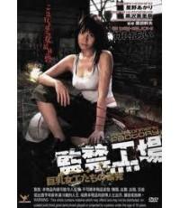DV0262 [1แผ่น] Imprisonment Factory - สาวโรงงานถลุงกาม [หนังRญี่ปุ่น] 18+ ไม่มีซับ