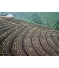 แม่โจ้โพลล์ เผยผลสำรวจปัญหาของเกษตรกรบนพื้นที่สูง
