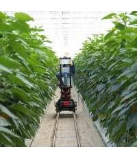 เกษตรกรอัจฉริยะยุค 5 จี เป็นอย่างไร
