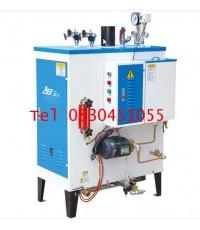 เครื่องผลิตไอน้ำแบบใช้แก๊ส LPG  (Steam Boiler)