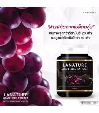 Lanature Grape Seed Extract สารสกัดจากเมล็ดองุ่น (30แคปซูล) ราคาส่งถูกๆ W.65 รหัส GU343