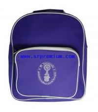 กระเป๋านักรียน เป้สะพายเด็กเล็ก(12.5 นิ้ว) 249 (920M5)