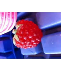 แม่พิมพ์ รูปราสเบอรี่ 5 ช่อง (100 g)