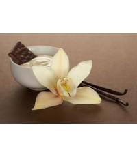 หัวน้ำหอม กลิ่น warm vanila -PC0081 450 ml.