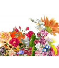 หัวน้ำหอม กลิ่น sweet floral