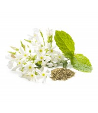 White Jasmine  Mint fragrance 1 kg.