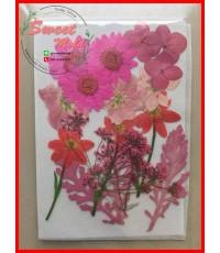 ดอกไม้แห้งตกแต่งจากธรรมชาติDiy(แบบที่6)